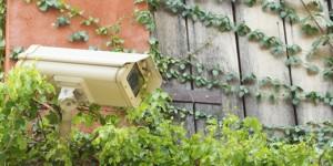 CCTV-in-the-garden